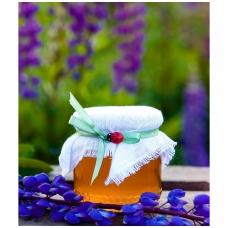 Medus, papuoštas drobe ir boružėle (250 g)