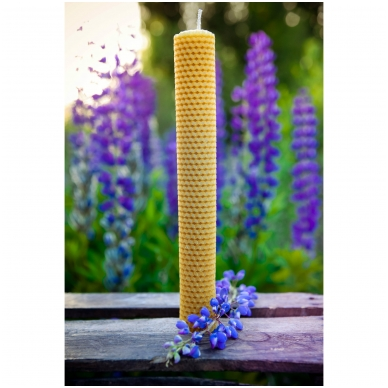 Bičių vaško žvakė iš korio (41 x 3,5 cm)